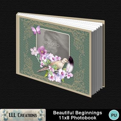 Beautiful_beginnings_11x8__pb-001a