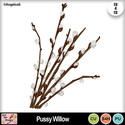 Pussy_willow_preview_small