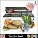 Springtime_special_preview_small