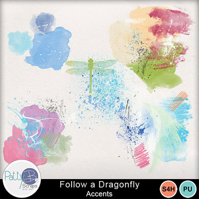 Pbs_followadragonfly_accents