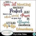 Mm_ls_flyakite_titles_small