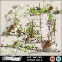 Florju_pv_softnature_cluster2_small