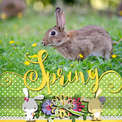 600-adbdesigns-charming-springtime-linda-02