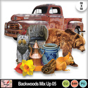 Backwoods_mix_up_05_preview_small