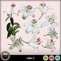 Lillies3_small