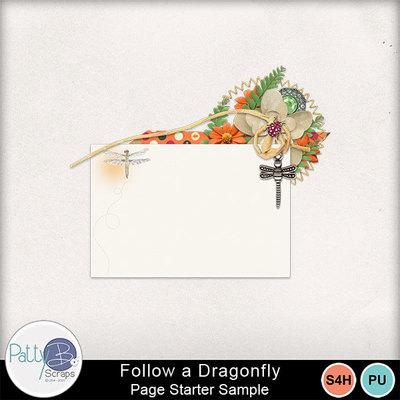 Followadragonfly_cluster2