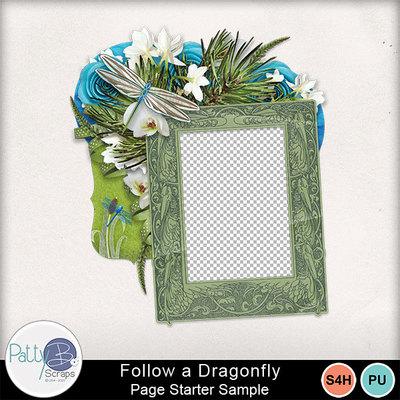 Followadragonfly_cluster3