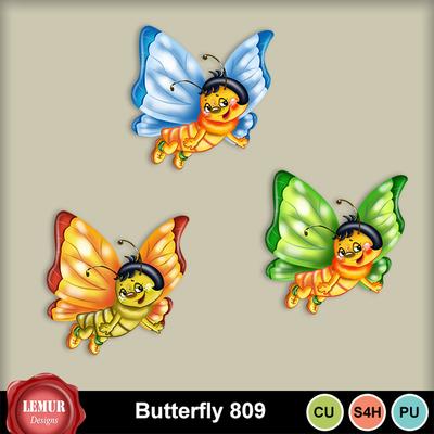 Butterfly809
