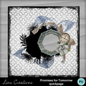 Promisesfortomorrow13_small