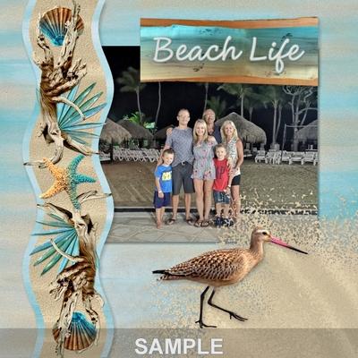 The_beach_house_word_art-03