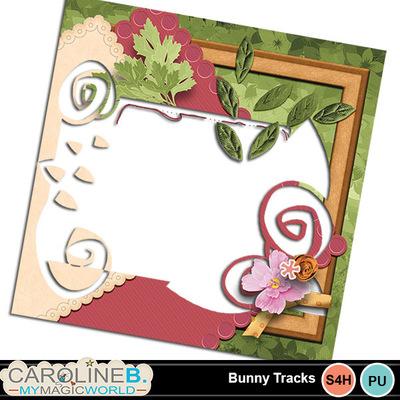 Bunnytracks_qpo01