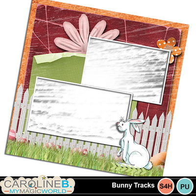 Bunnytracks_qp02