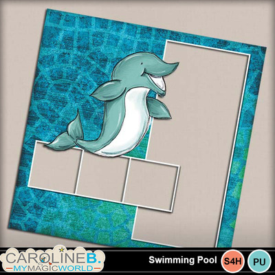 Swimmingpool_12x12_qp16-copy