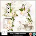 Dsd_preciousparenth_embell_small