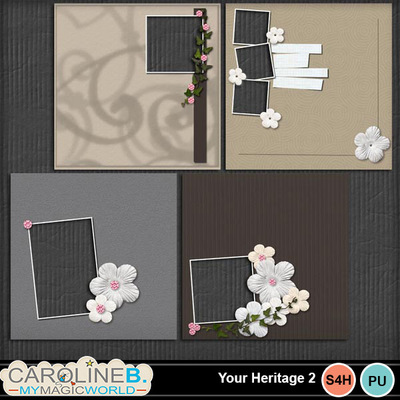 Your-heritage-2-qp-album_1