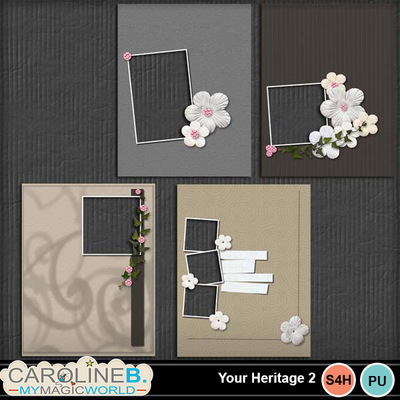 Your-heritage-2-11x8-qps_1
