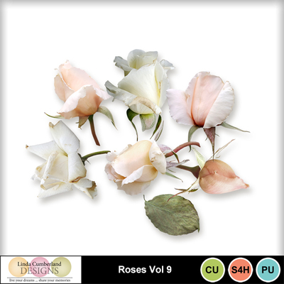 Roses_vol9-1