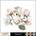 Roses_vol9-1_small