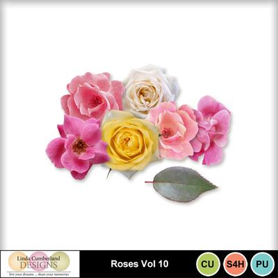 Roses_vol_10-1
