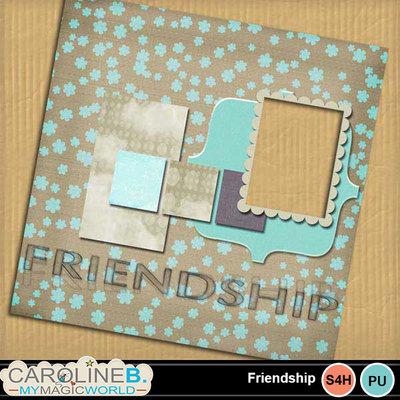 Friendship_12x12_qp13_1