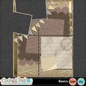 Basics-11x8-qp-04_small