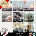 Ageofsail_shipppr_small