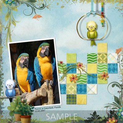 Petme_bird-003