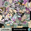 Beautiful_beginnings-01_small