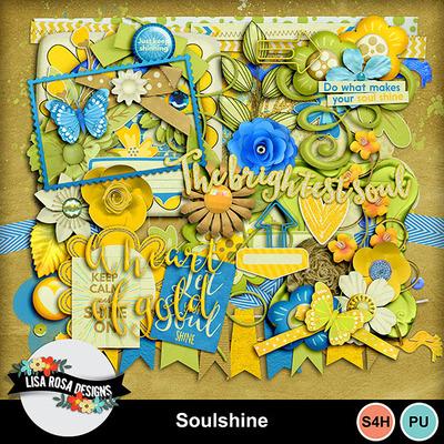 Lisarosadesigns_soulshine_elements