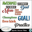 Mm_sportssoccertitles_small