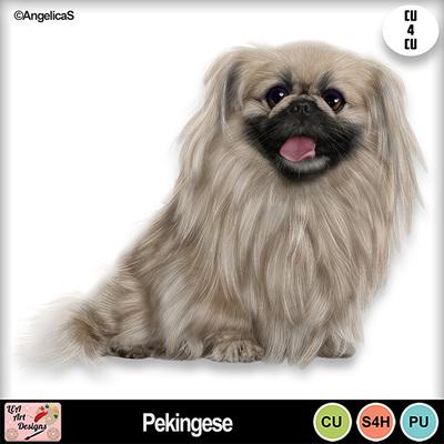 Pekingese_preview