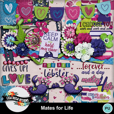 1lisarosadesigns_matesforlife_kit