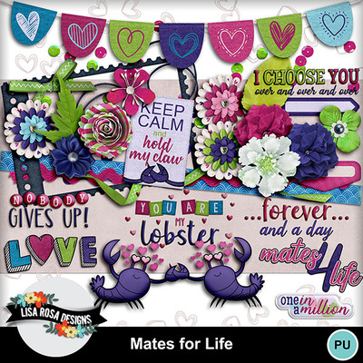Lisarosadesigns_matesforlife_elements