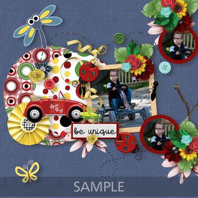 Ladybug2sample