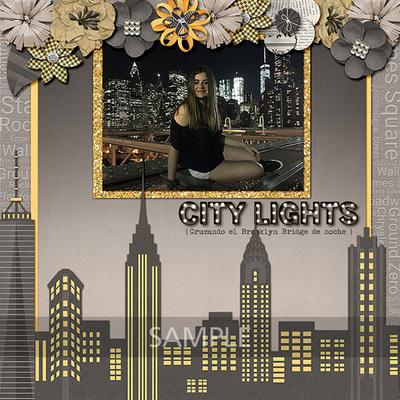 New-york-city-19