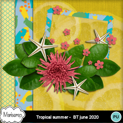 Msp_tropical_summer_bt_pvmms_freebie