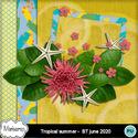 Msp_tropical_summer_bt_pvmms_freebie_small