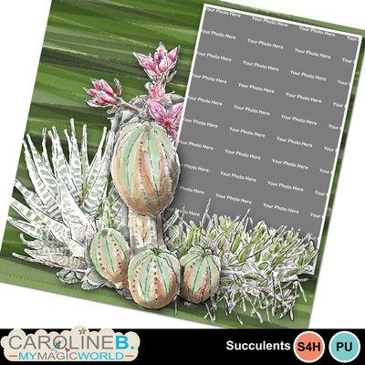 Succulents_qp01