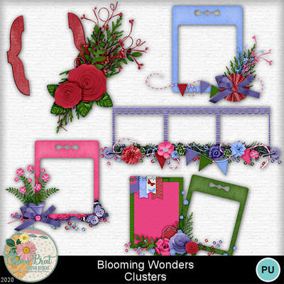 Bloomingwonders_clusters