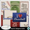 Mm_sportsballgamejournalcards_small