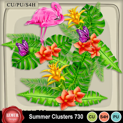 Summer_clusters730