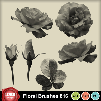Floral_brushes816