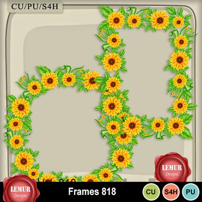 Frames818