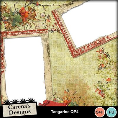 Tangarine-qp4