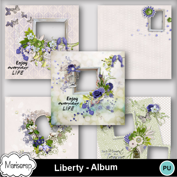 Msp_liberty_pvalbummms_small
