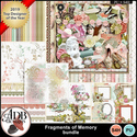 Fragments_of_memory__bundle_small