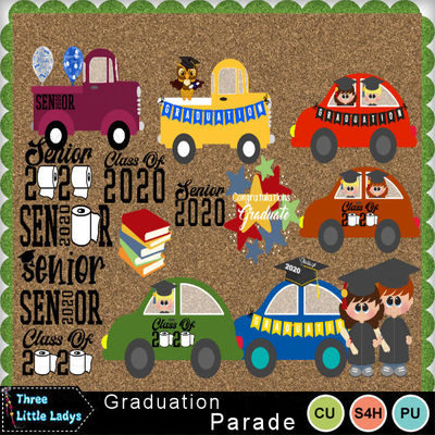 Graduation_parade-tll