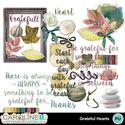 Gratefulheartsel_1_small