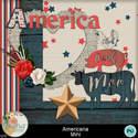 Americana_mini_small
