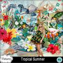 Msp_tropical_summer_mms_small